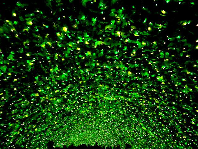 なばなの里ウィンターイルミネーション・「お花畑」の光のトンネル(2)