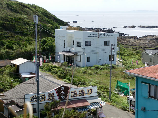 城ヶ島DXペディ(1)