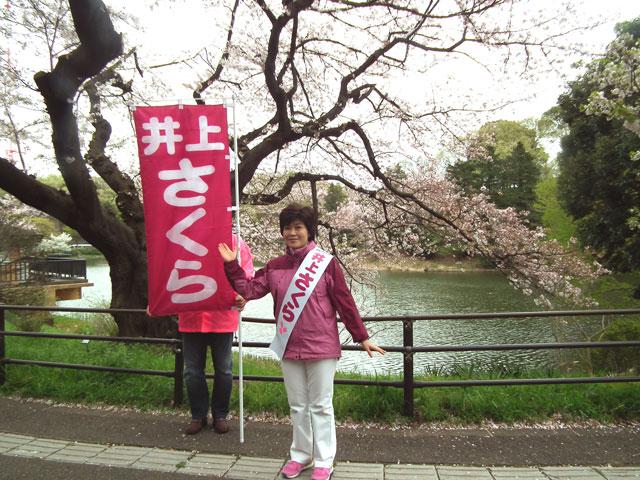 三ッ池公園で桜とさくらさん
