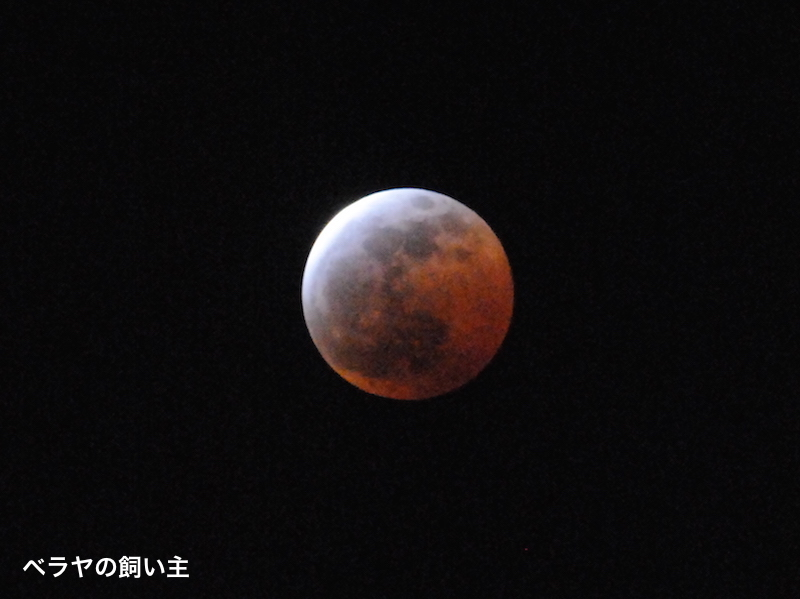 BNK_lunar eclipse_DSC_0167