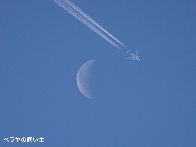 BNK_Moon_plane_DSC03808.jpg