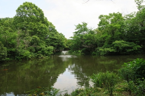 05和田堀公園