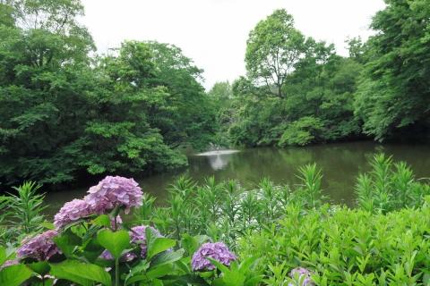 07和田堀公園