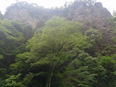 12神戸岩
