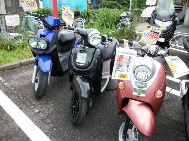 IMGP1101.jpg