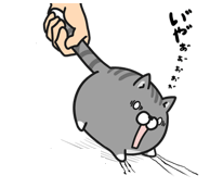 20150530111018ce3.png