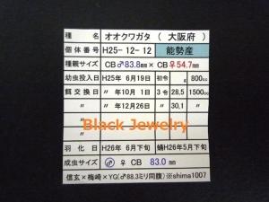 NS830証明BJ_Style①