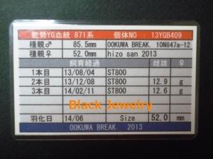 Black Jewelry ワイドカウYG520証明BJ_Style①