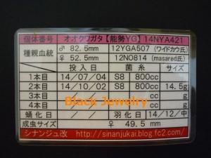 Black Jewelry シナンジュ改YG495証明BJ_Style①