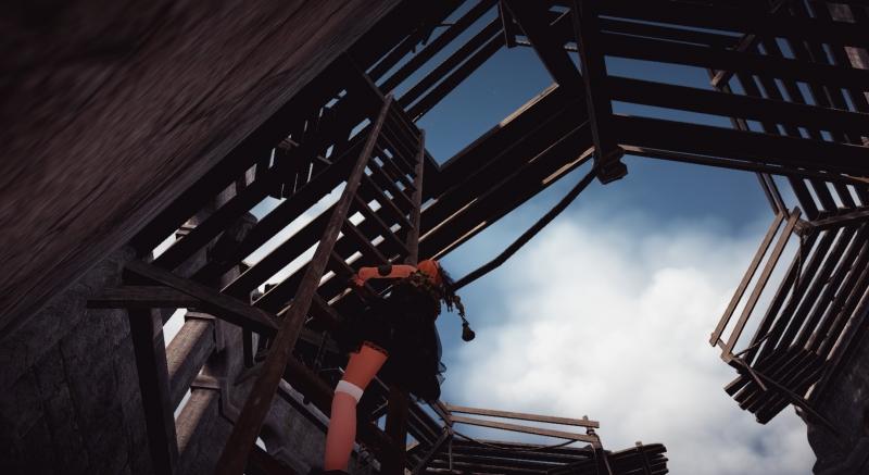 梯子を登る!