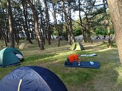 2015-05-30_05-44-31.jpg