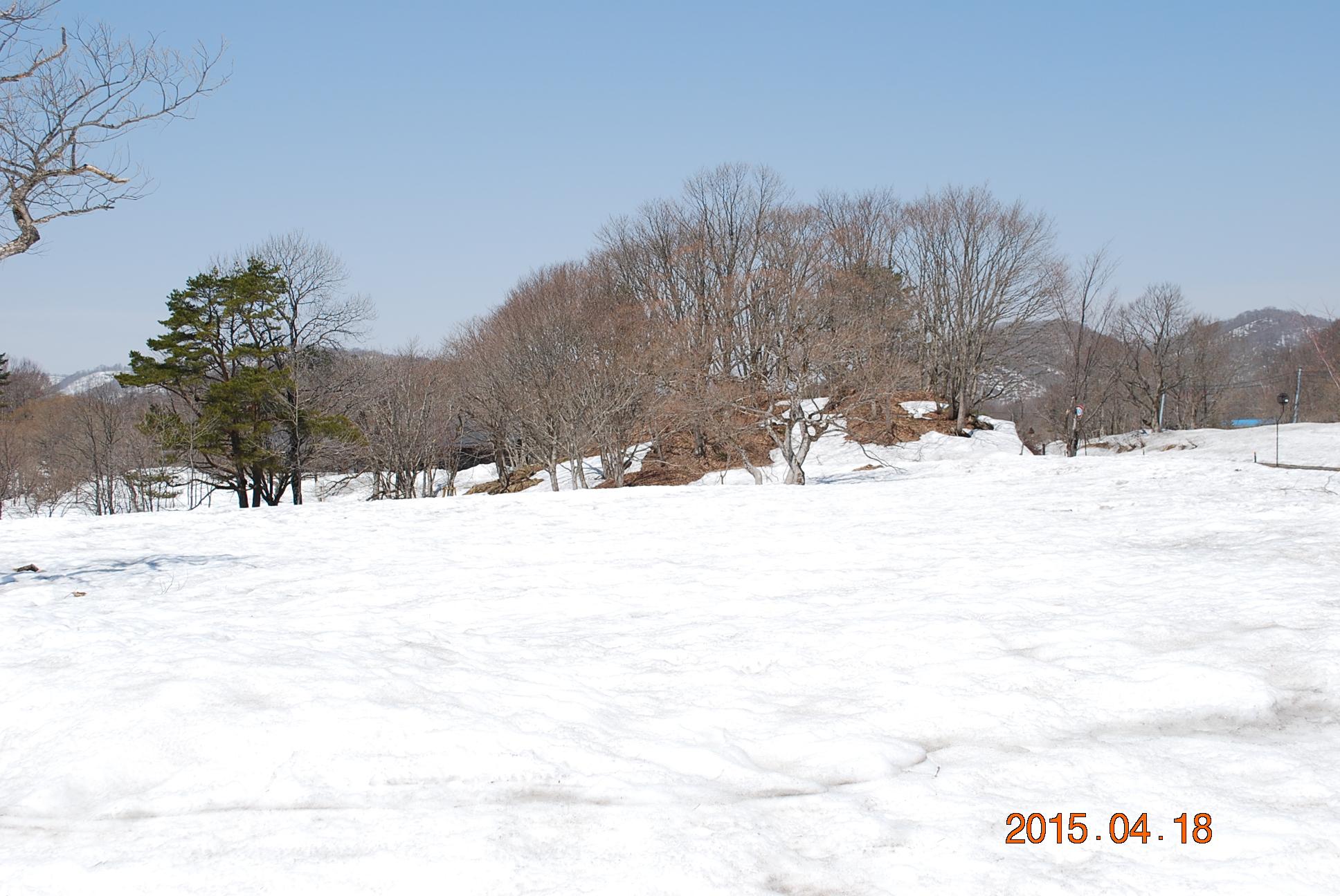 2015_0418_110856-DSC_4187.jpg
