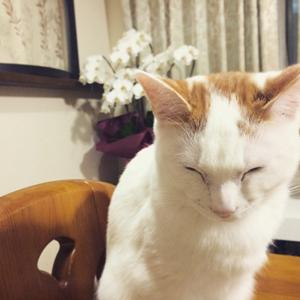 6蘭ちゃん杏ちゃん椎ちゃん