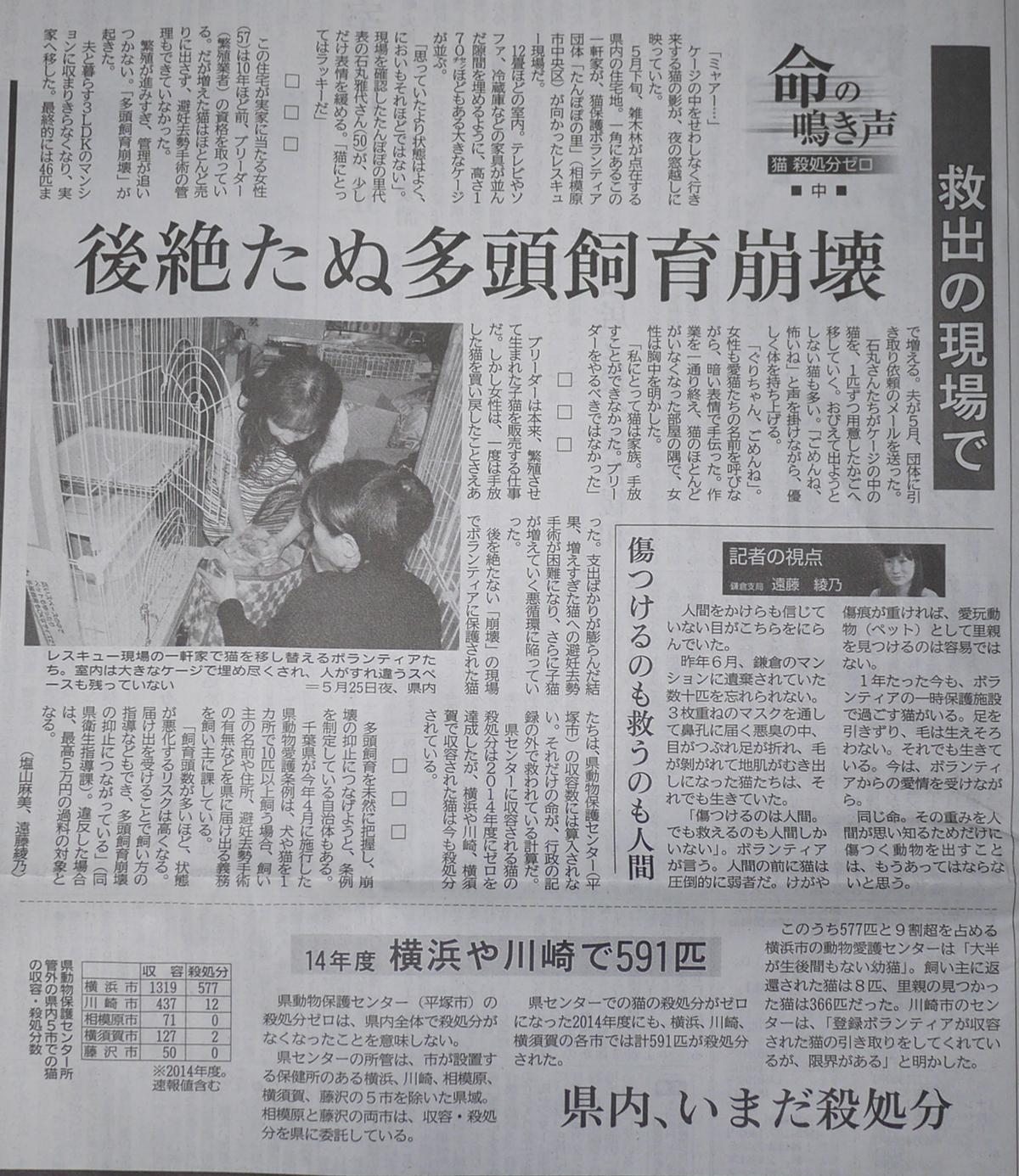 27年6月3日神奈川新聞