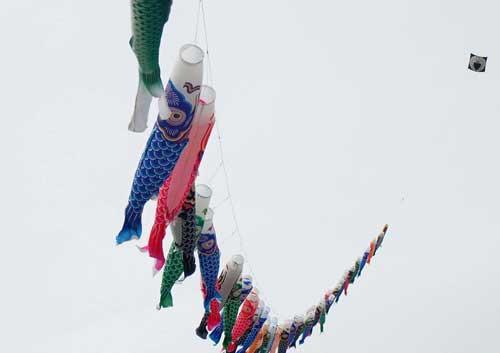 鯉のぼり凧揚げ1