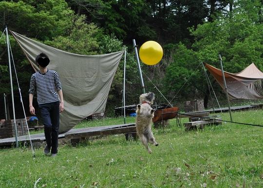 20150505宮ケ瀬13