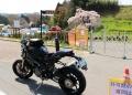 三春滝桜とDUC