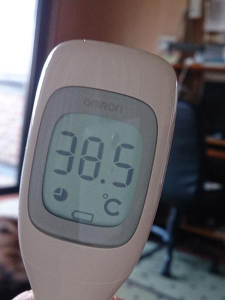 20150522発熱