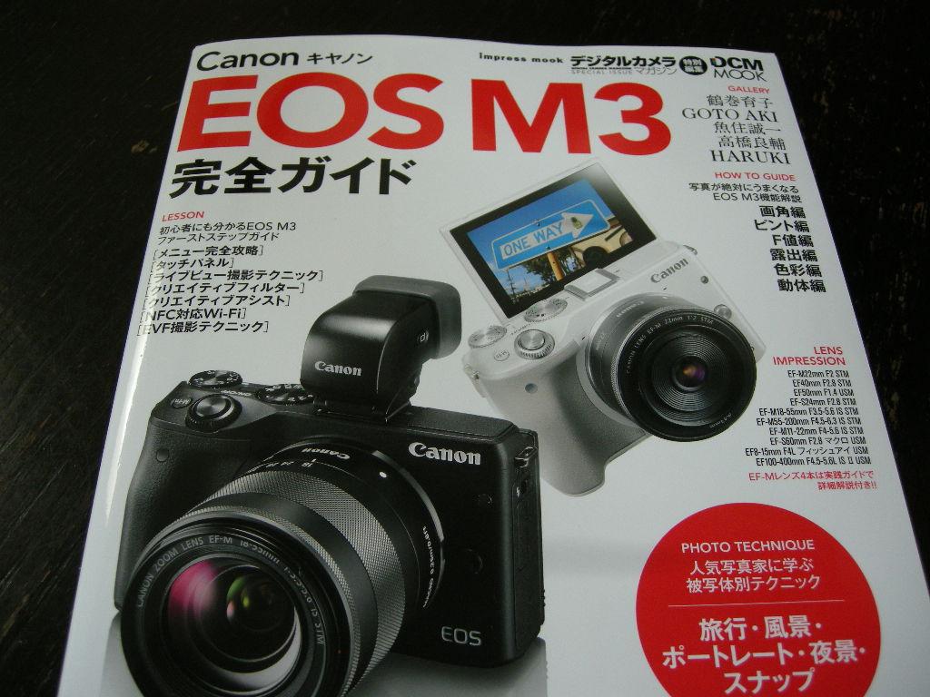 DSCN6641.jpg