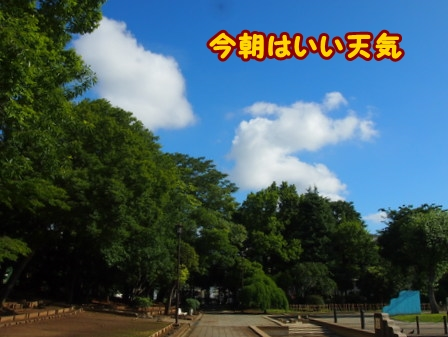 P6209600a.jpg