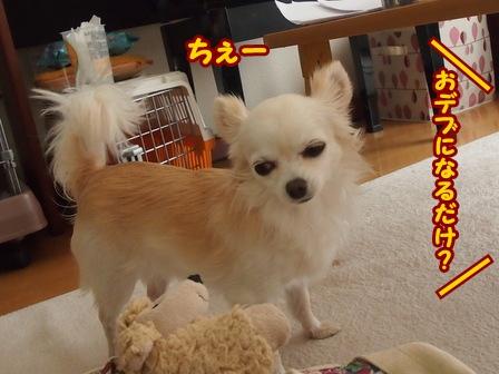blog5094a.jpg