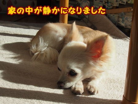 blog5132a.jpg