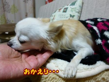 blog5306a.jpg