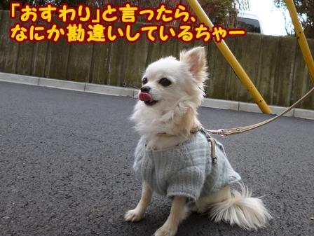 blog5326a.jpg