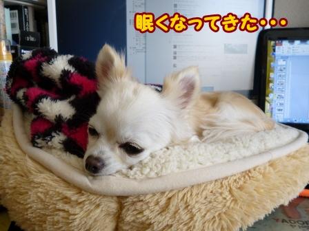 blog5386a.jpg
