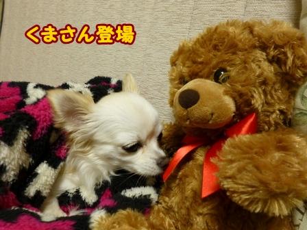 blog5460a.jpg