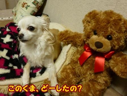 blog5462a.jpg