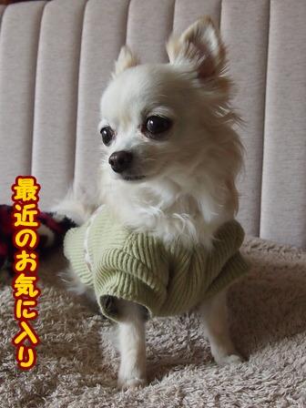 blog5604a.jpg