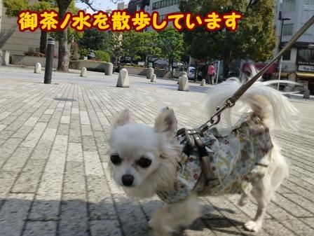 blog5670a.jpg