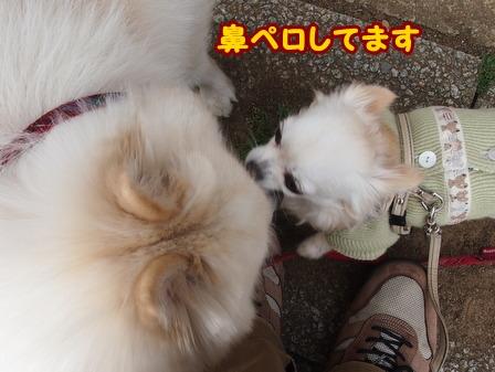 blog5708a.jpg