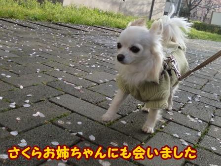blog5752a.jpg