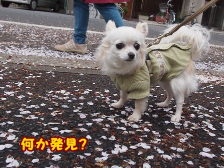 blog5766a.jpg
