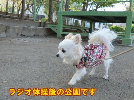 blog5795a.jpg