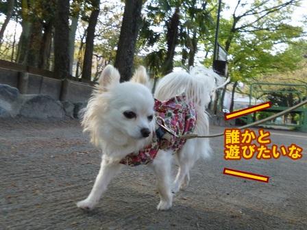 blog5798a.jpg