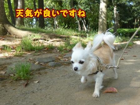 blog5885a.jpg