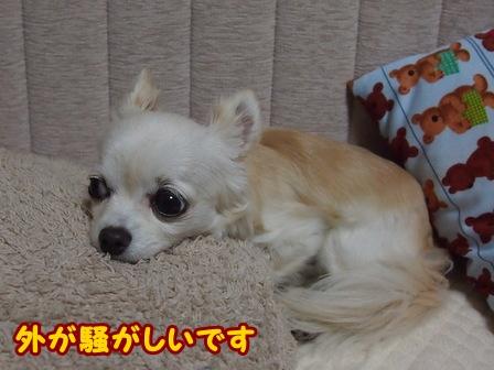 blog5996a.jpg