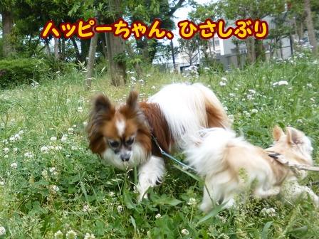 blog6001a.jpg