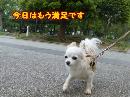 blog6003a.jpg