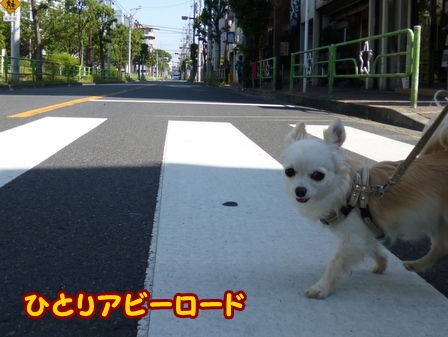 blog6004a.jpg