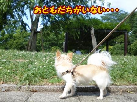 blog6080a.jpg