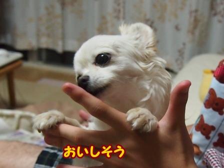 blog6121a.jpg