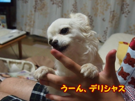 blog6123a.jpg