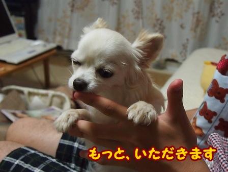 blog6126a.jpg