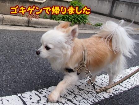 blog6179a.jpg