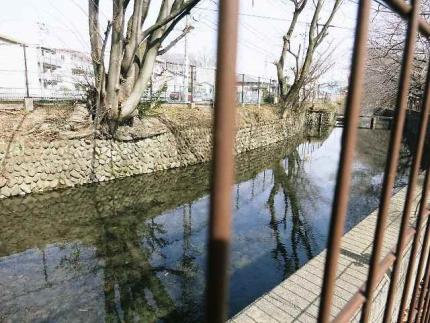 1572-28 浄水