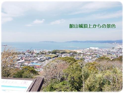 館山城頂上の景色